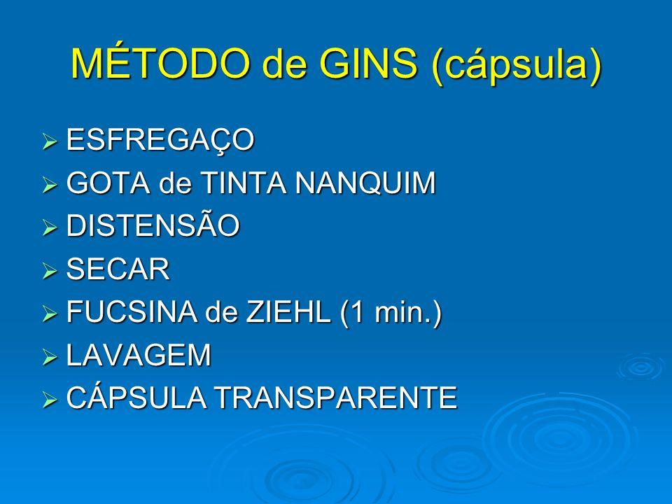 FONTANA-TRIBONDEAUX SOLUÇÃO FIXADORA (hemácias) 1min.