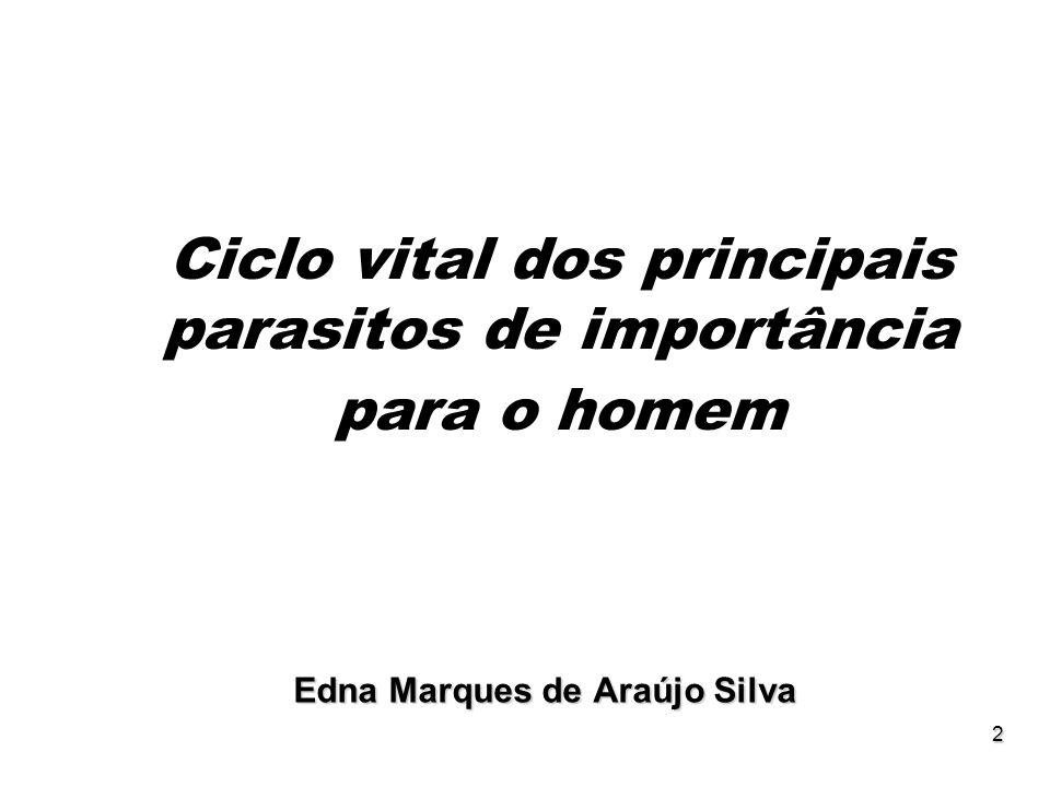 2 Ciclo vital dos principais parasitos de importância para o homem Edna Marques de Araújo Silva
