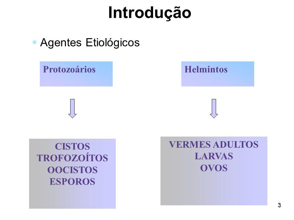 3 Introdução Agentes Etiológicos ProtozoáriosHelmintos CISTOS TROFOZOÍTOS OOCISTOS ESPOROS VERMES ADULTOS LARVAS OVOS