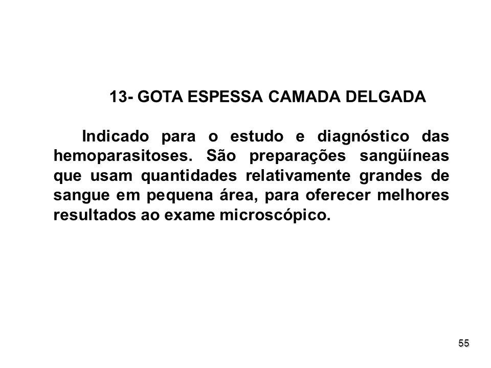 55 13- GOTA ESPESSA CAMADA DELGADA Indicado para o estudo e diagnóstico das hemoparasitoses. São preparações sangüíneas que usam quantidades relativam