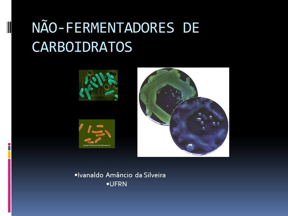 BGN-NF IDENTIFICAÇÃO INICIAL EXAME MACROSCÓPICO DA CULTURA P. stutzeri B.cepacia Acinetobacter