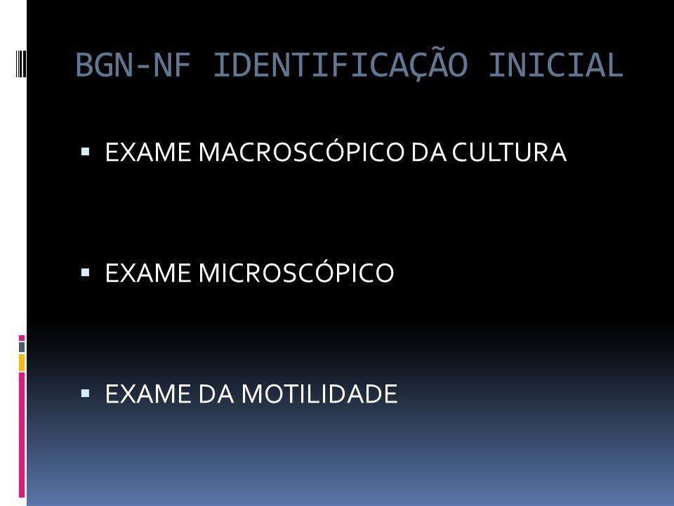 BGN-NF IDENTIFICAÇÃO INICIAL EXAME MACROSCÓPICO DA CULTURA EXAME MICROSCÓPICO EXAME DA MOTILIDADE