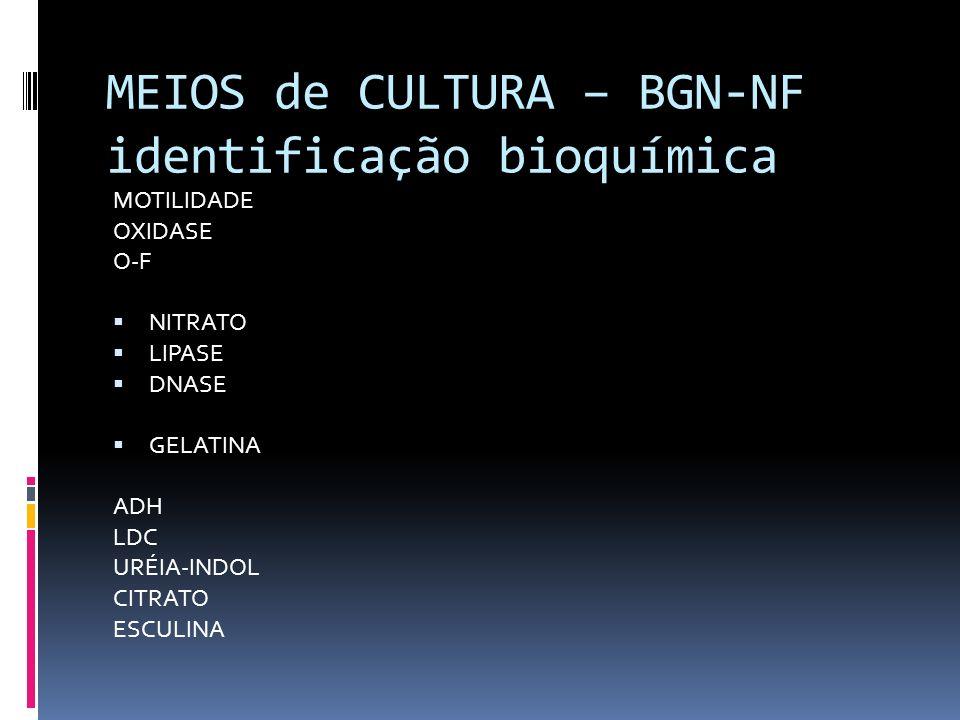 MEIOS de CULTURA – BGN-NF identificação bioquímica MOTILIDADE OXIDASE O-F NITRATO LIPASE DNASE GELATINA ADH LDC URÉIA-INDOL CITRATO ESCULINA