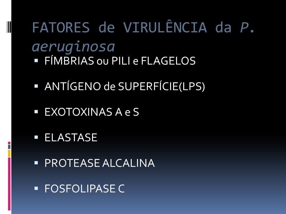 FATORES de VIRULÊNCIA da P. aeruginosa FÍMBRIAS ou PILI e FLAGELOS ANTÍGENO de SUPERFÍCIE(LPS) EXOTOXINAS A e S ELASTASE PROTEASE ALCALINA FOSFOLIPASE