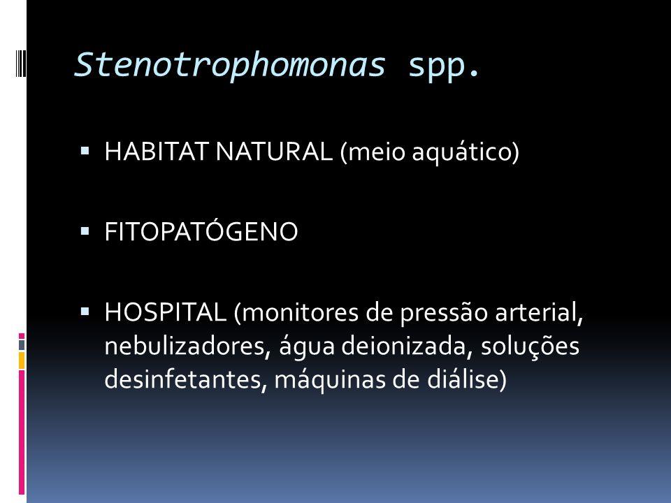 Stenotrophomonas spp. HABITAT NATURAL (meio aquático) FITOPATÓGENO HOSPITAL (monitores de pressão arterial, nebulizadores, água deionizada, soluções d