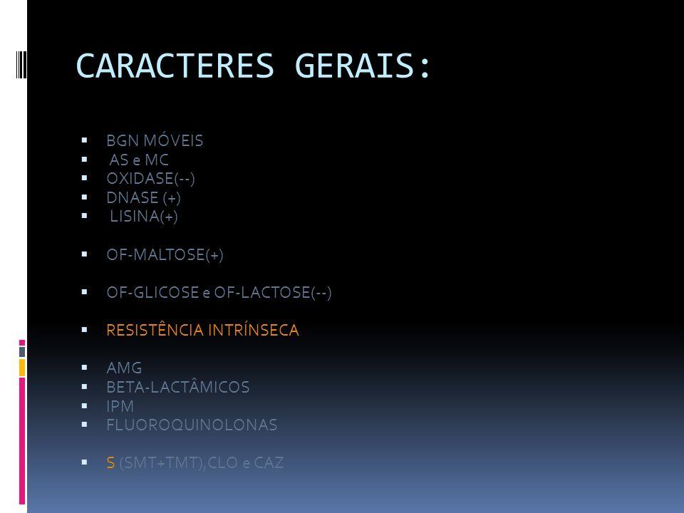 CARACTERES GERAIS: BGN MÓVEIS AS e MC OXIDASE(--) DNASE (+) LISINA(+) OF-MALTOSE(+) OF-GLICOSE e OF-LACTOSE(--) RESISTÊNCIA INTRÍNSECA AMG BETA-LACTÂM