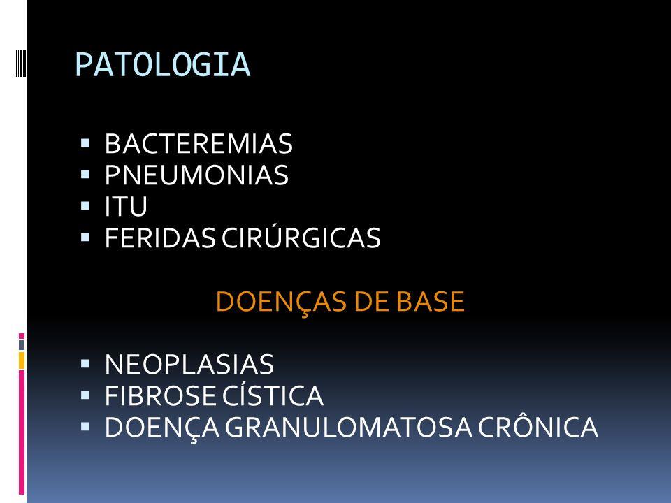 PATOLOGIA BACTEREMIAS PNEUMONIAS ITU FERIDAS CIRÚRGICAS DOENÇAS DE BASE NEOPLASIAS FIBROSE CÍSTICA DOENÇA GRANULOMATOSA CRÔNICA