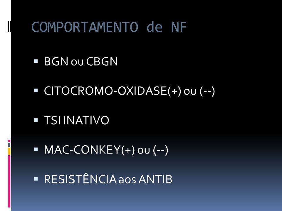 GÊNERO / PSEUDOMONAS OXIDASE(+) MOTILIDADE(+) M.OXIDATIVO: P.