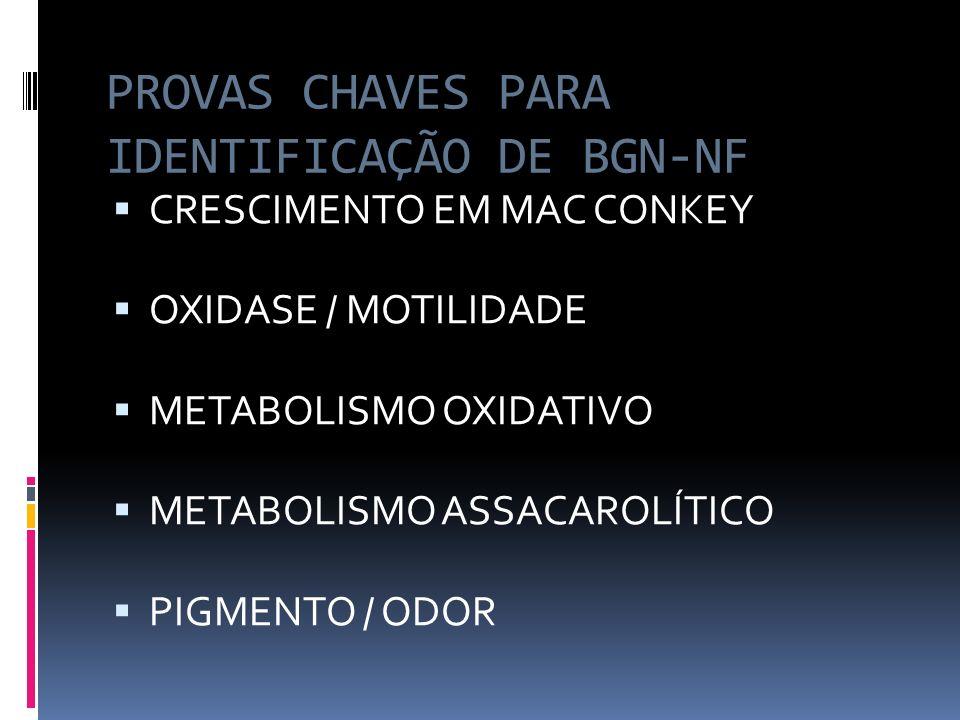 Pseudomonas aeruginosa CARACTERES GERAIS: BGN MÓVEIS, AERÓBIOS, NÃO- ESPORULADOS HEMÓLISE, OXIDASE(+), PIOCIANINA CRESCEM à 35° e 42°C em MC (COLÔNIAS GRANDES,MUCÓIDES e BRILHO METÁLICO) ODOR CARACTERÍSTICO