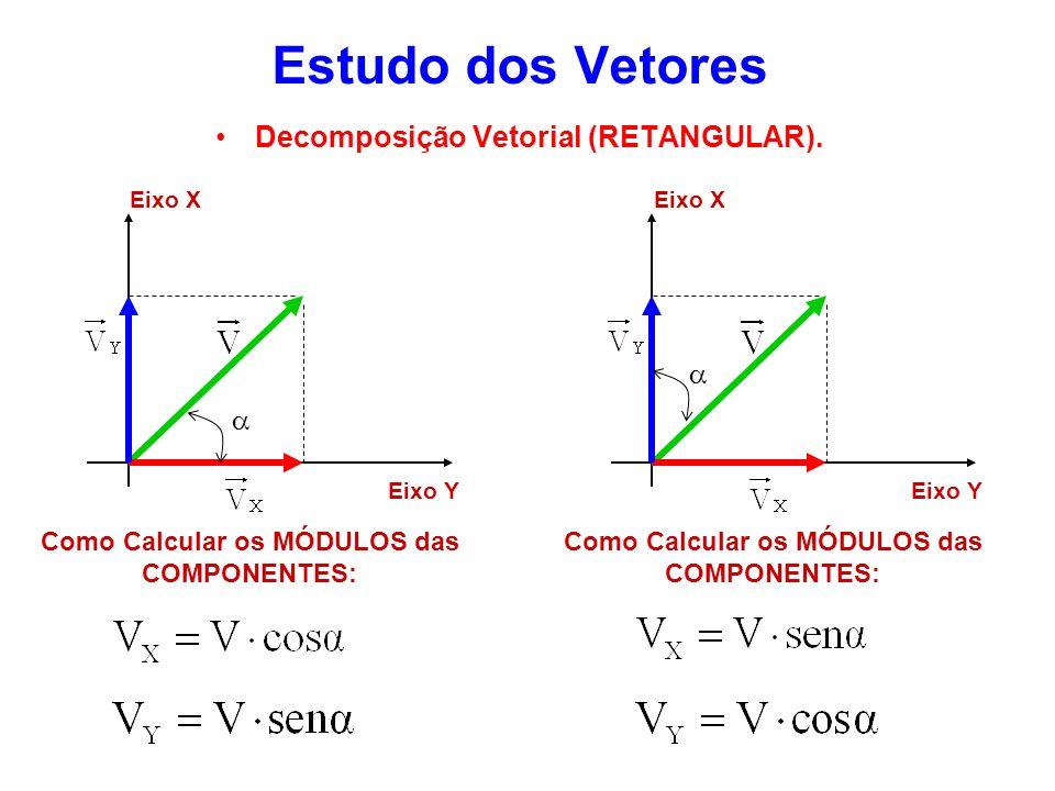 Estudo dos Vetores Decomposição Vetorial (RETANGULAR). Eixo X Eixo Y Como Calcular os MÓDULOS das COMPONENTES: Eixo X Eixo Y Como Calcular os MÓDULOS