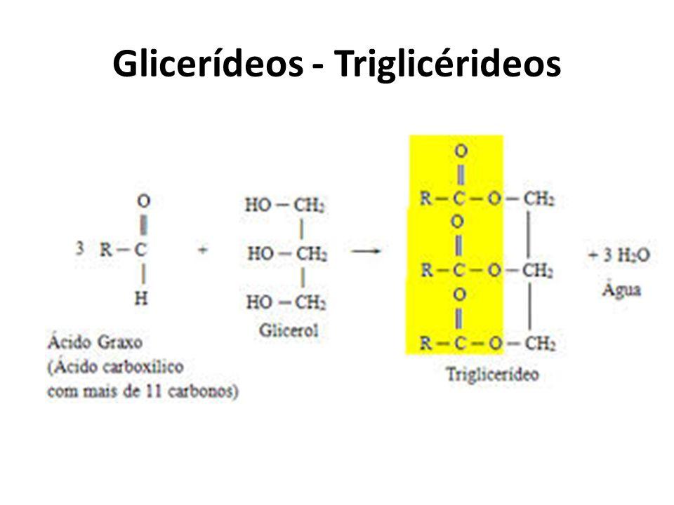 Glicerídeos - Triglicérideos