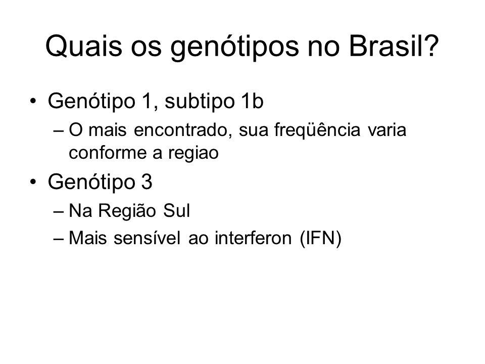 Quais os genótipos no Brasil? Genótipo 1, subtipo 1b –O mais encontrado, sua freqüência varia conforme a regiao Genótipo 3 –Na Região Sul –Mais sensív