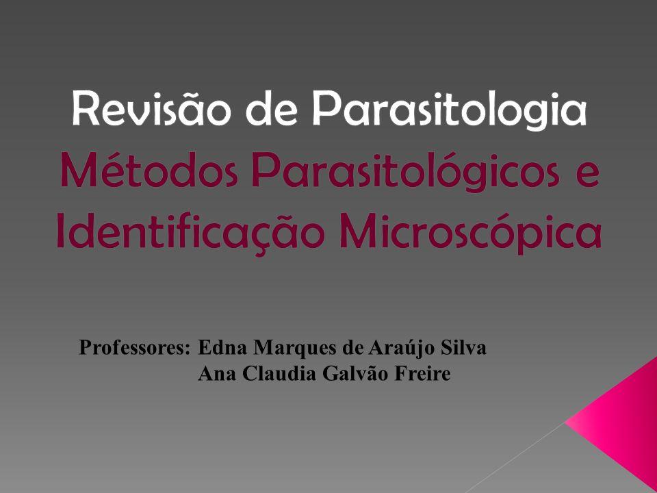 Professores: Edna Marques de Araújo Silva Ana Claudia Galvão Freire