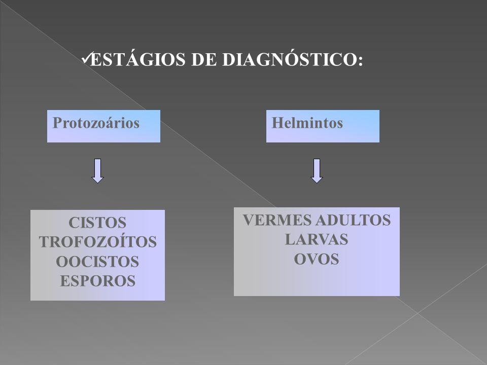 ESTÁGIOS DE DIAGNÓSTICO: ProtozoáriosHelmintos CISTOS TROFOZOÍTOS OOCISTOS ESPOROS VERMES ADULTOS LARVAS OVOS