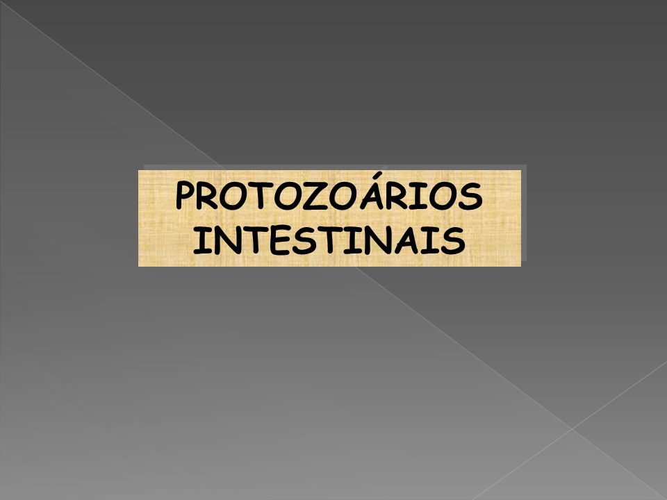 PROTOZOÁRIOS INTESTINAIS PROTOZOÁRIOS INTESTINAIS