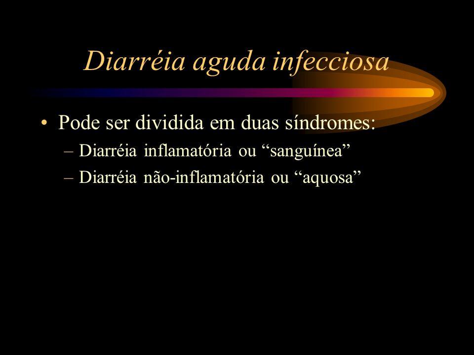 Diarréia aguda infecciosa Pode ser dividida em duas síndromes: –Diarréia inflamatória ou sanguínea –Diarréia não-inflamatória ou aquosa