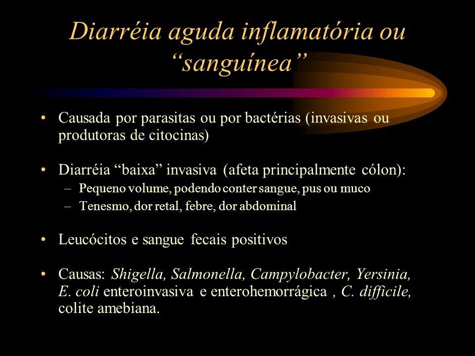 Diarréia aguda inflamatória ou sanguínea Causada por parasitas ou por bactérias (invasivas ou produtoras de citocinas) Diarréia baixa invasiva (afeta