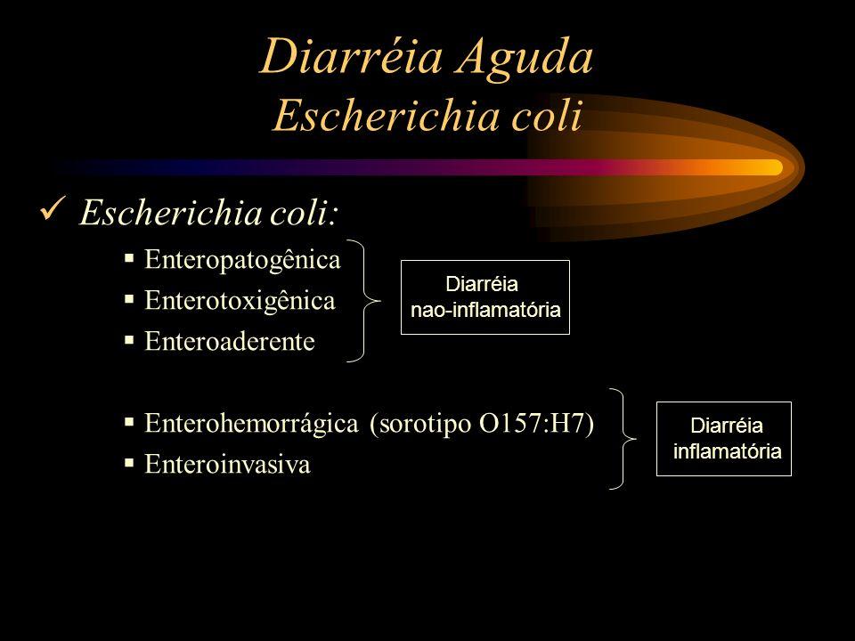 Diarréia Aguda Escherichia coli Escherichia coli: Enteropatogênica Enterotoxigênica Enteroaderente Enterohemorrágica (sorotipo O157:H7) Enteroinvasiva