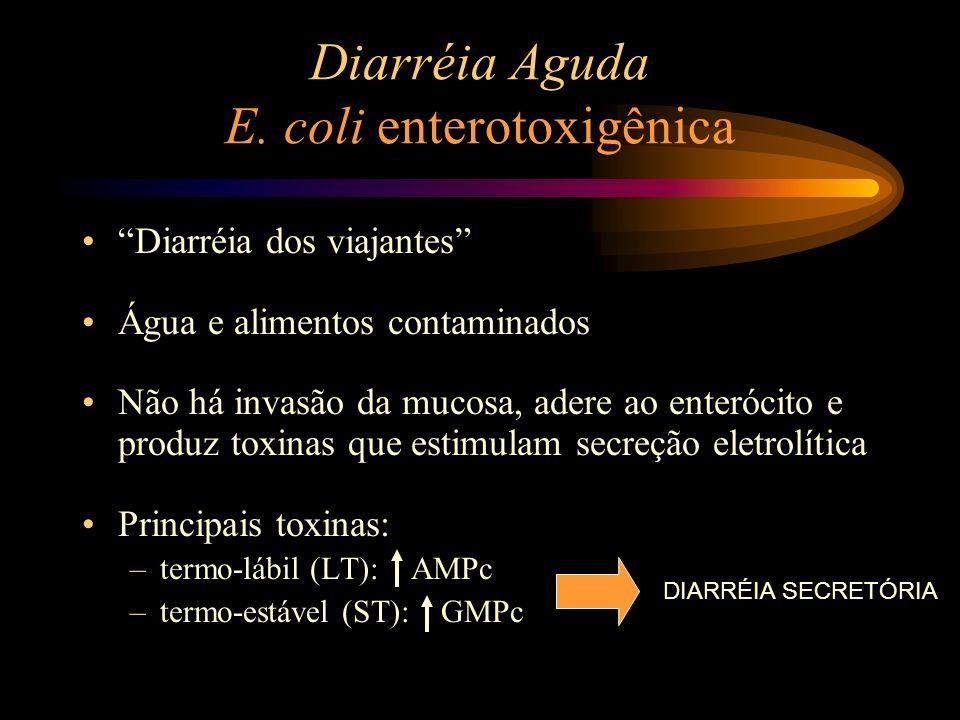 Diarréia Aguda E. coli enterotoxigênica Diarréia dos viajantes Água e alimentos contaminados Não há invasão da mucosa, adere ao enterócito e produz to