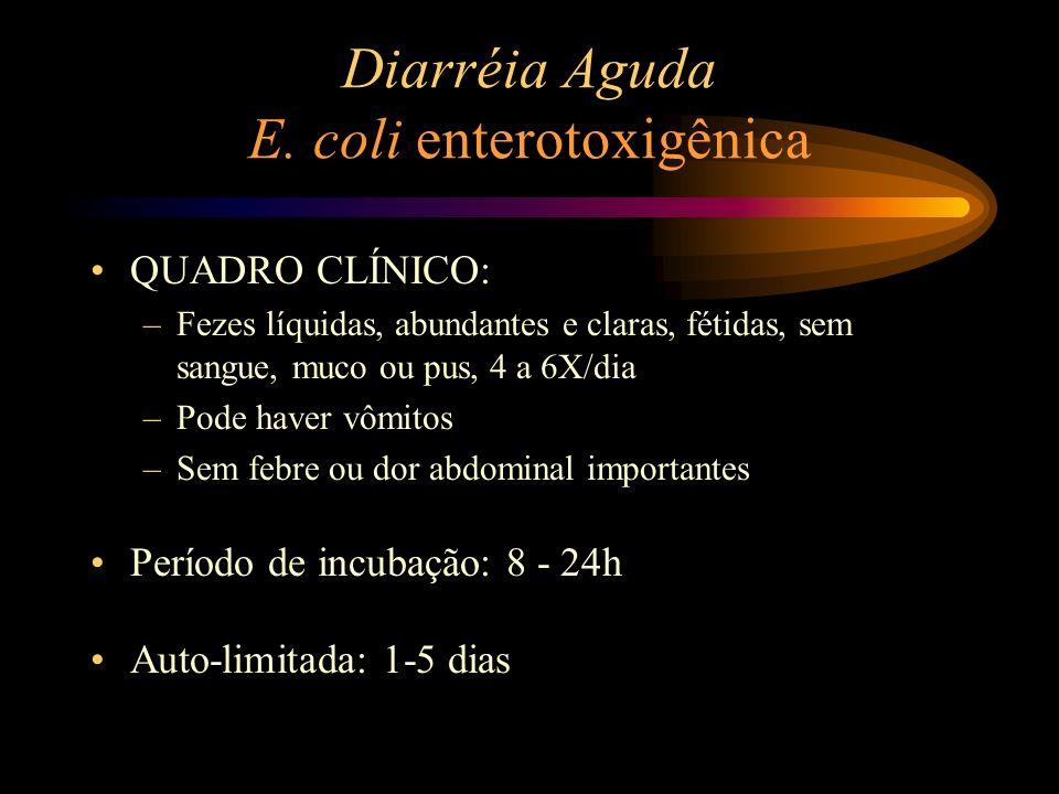Diarréia Aguda E. coli enterotoxigênica QUADRO CLÍNICO: –Fezes líquidas, abundantes e claras, fétidas, sem sangue, muco ou pus, 4 a 6X/dia –Pode haver