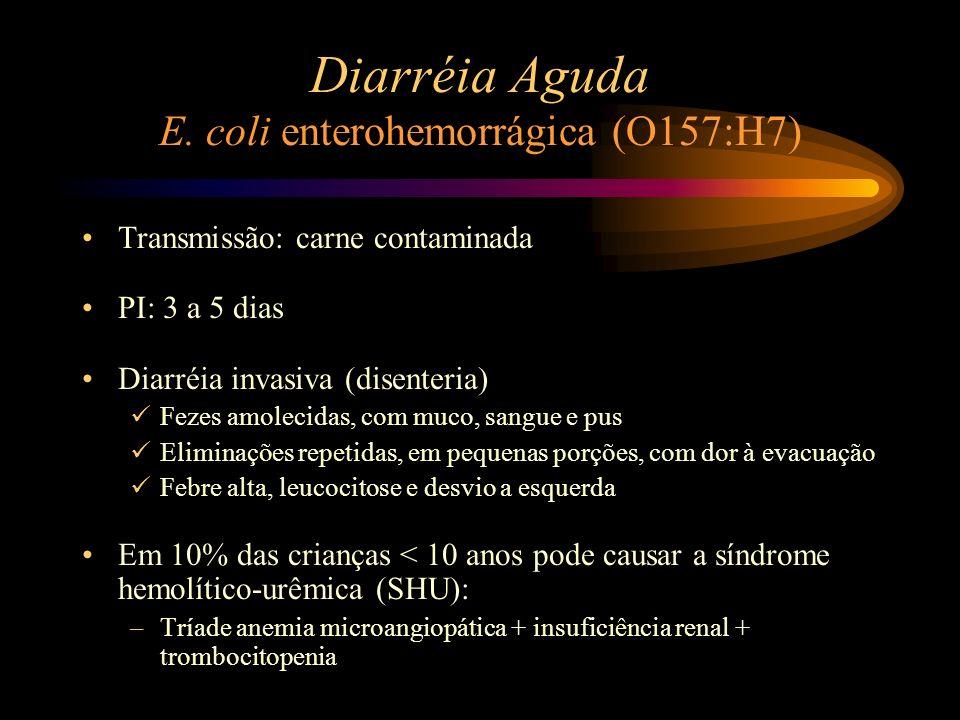 Diarréia Aguda E. coli enterohemorrágica (O157:H7) Transmissão: carne contaminada PI: 3 a 5 dias Diarréia invasiva (disenteria) Fezes amolecidas, com