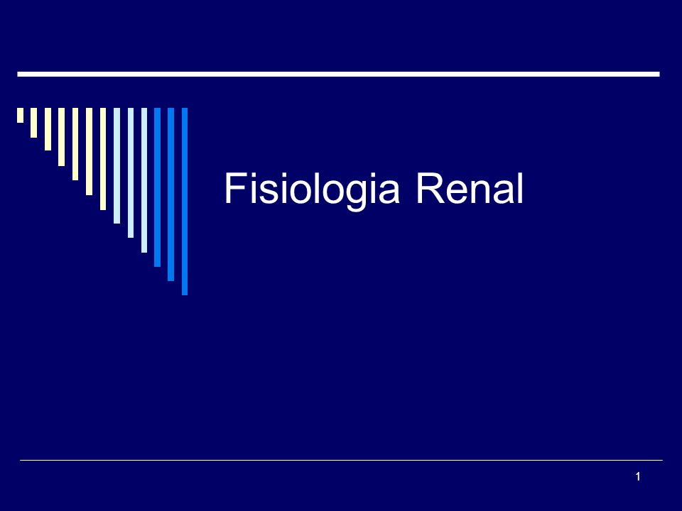 1 Fisiologia Renal