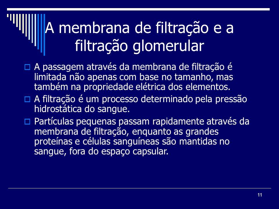 11 A membrana de filtração e a filtração glomerular A passagem através da membrana de filtração é limitada não apenas com base no tamanho, mas também