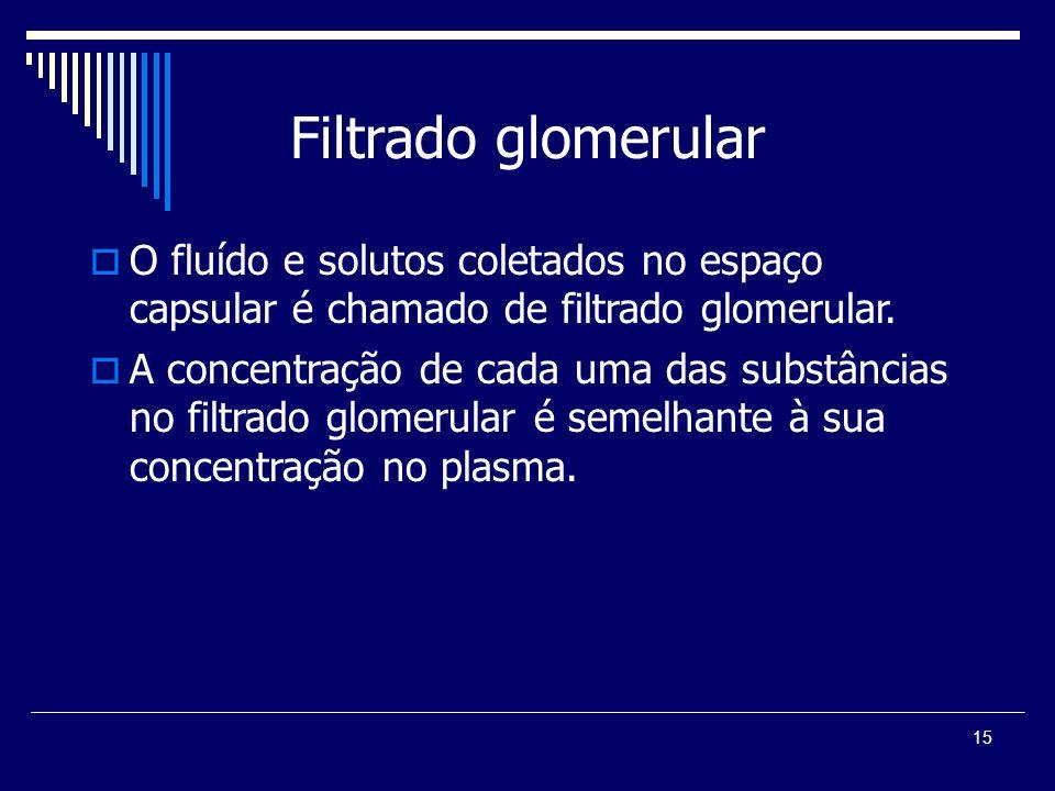 15 Filtrado glomerular O fluído e solutos coletados no espaço capsular é chamado de filtrado glomerular. A concentração de cada uma das substâncias no