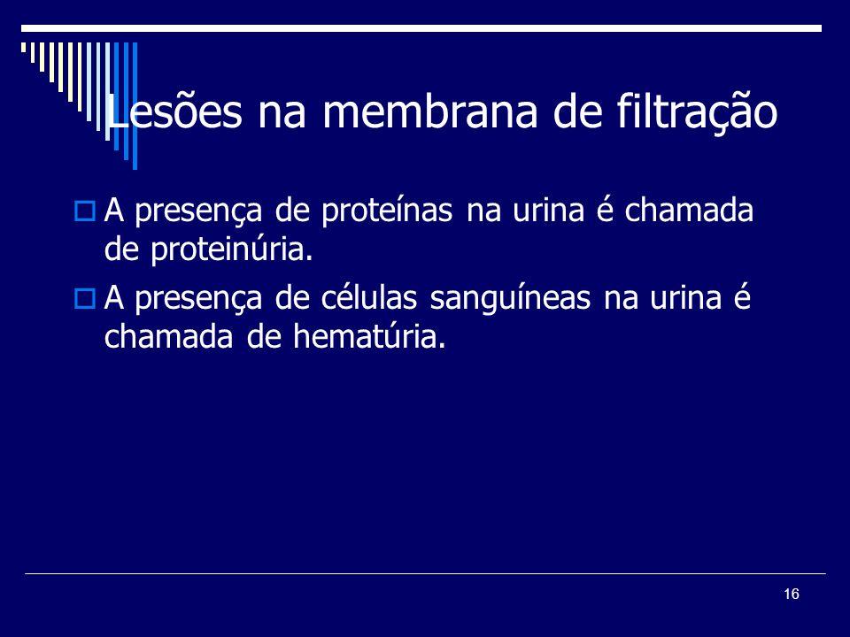 16 Lesões na membrana de filtração A presença de proteínas na urina é chamada de proteinúria. A presença de células sanguíneas na urina é chamada de h