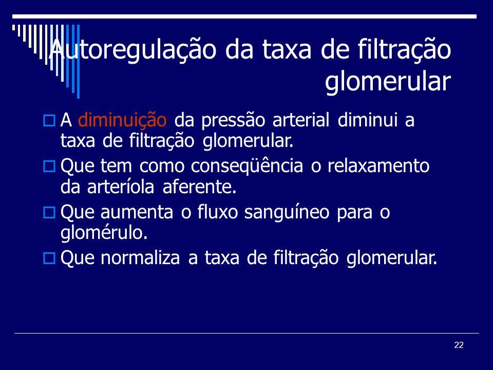 22 Autoregulação da taxa de filtração glomerular A diminuição da pressão arterial diminui a taxa de filtração glomerular. Que tem como conseqüência o