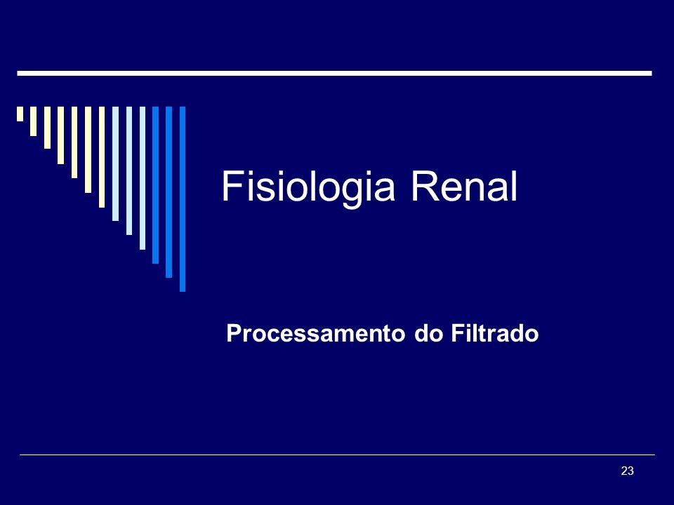 23 Fisiologia Renal Processamento do Filtrado