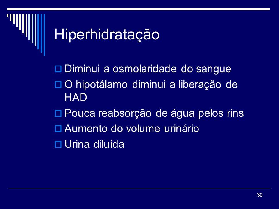 30 Hiperhidratação Diminui a osmolaridade do sangue O hipotálamo diminui a liberação de HAD Pouca reabsorção de água pelos rins Aumento do volume urin