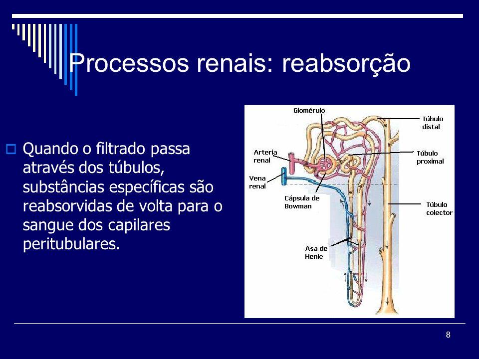8 Processos renais: reabsorção Quando o filtrado passa através dos túbulos, substâncias específicas são reabsorvidas de volta para o sangue dos capila
