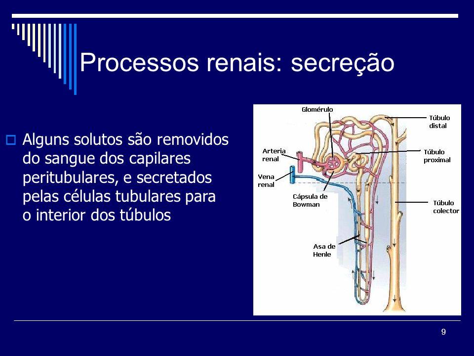 9 Processos renais: secreção Alguns solutos são removidos do sangue dos capilares peritubulares, e secretados pelas células tubulares para o interior