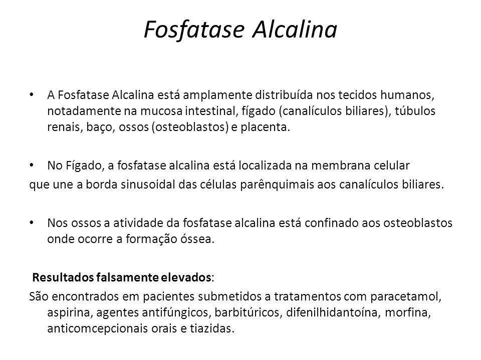 Fosfatase Alcalina A Fosfatase Alcalina está amplamente distribuída nos tecidos humanos, notadamente na mucosa intestinal, fígado (canalículos biliare
