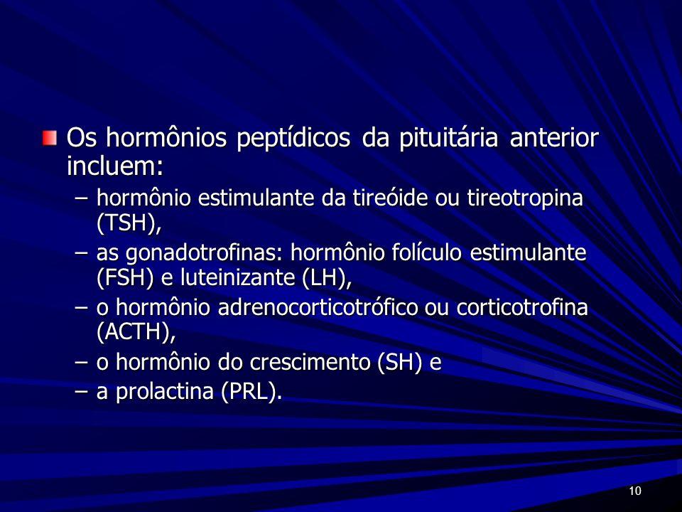 10 Os hormônios peptídicos da pituitária anterior incluem: –hormônio estimulante da tireóide ou tireotropina (TSH), –as gonadotrofinas: hormônio folíc