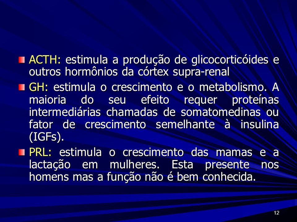 12 ACTH: estimula a produção de glicocorticóides e outros hormônios da córtex supra-renal GH: estimula o crescimento e o metabolismo. A maioria do seu