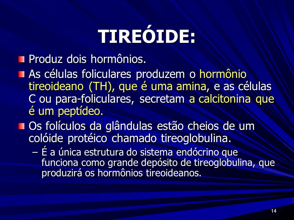 14 TIREÓIDE: Produz dois hormônios. As células foliculares produzem o hormônio tireoideano (TH), que é uma amina, e as células C ou para-foliculares,