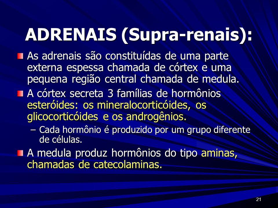 21 ADRENAIS (Supra-renais): As adrenais são constituídas de uma parte externa espessa chamada de córtex e uma pequena região central chamada de medula