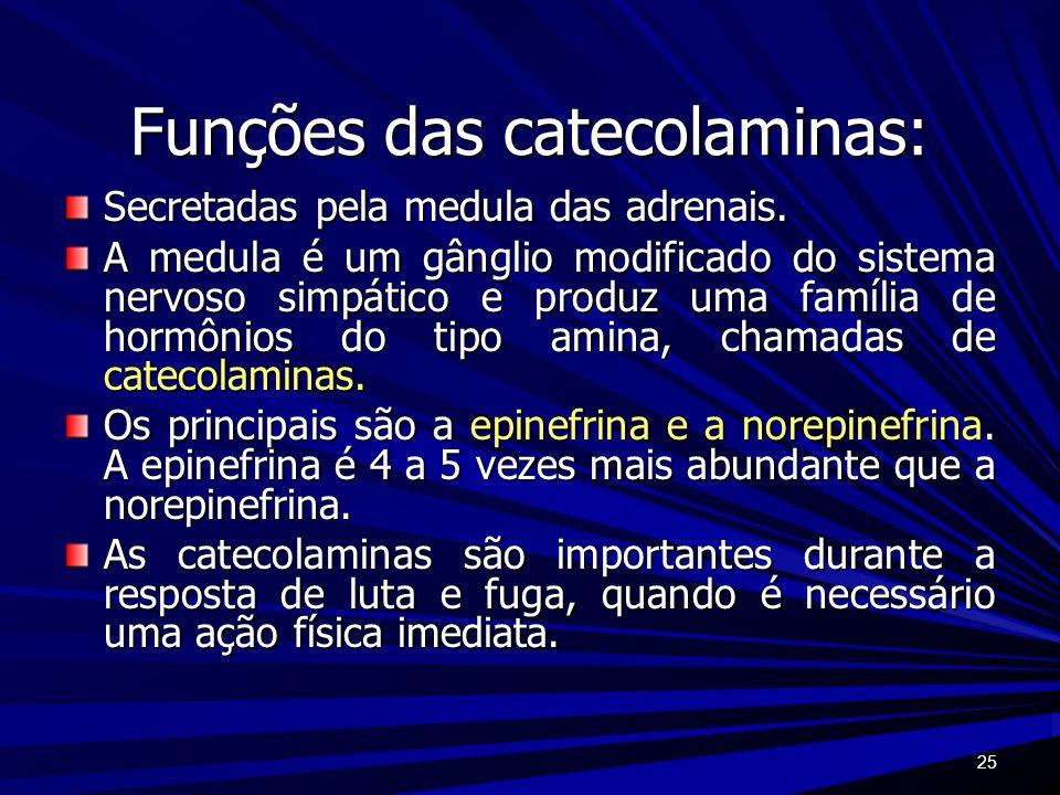 25 Funções das catecolaminas: Secretadas pela medula das adrenais. A medula é um gânglio modificado do sistema nervoso simpático e produz uma família
