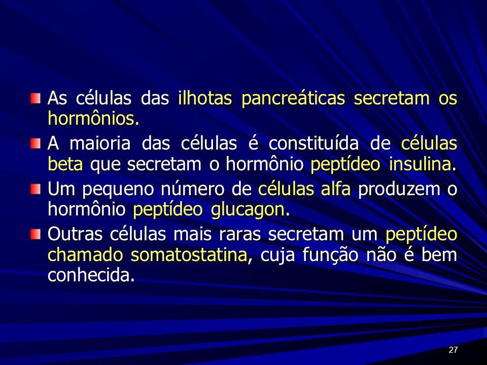 27 As células das ilhotas pancreáticas secretam os hormônios. A maioria das células é constituída de células beta que secretam o hormônio peptídeo ins