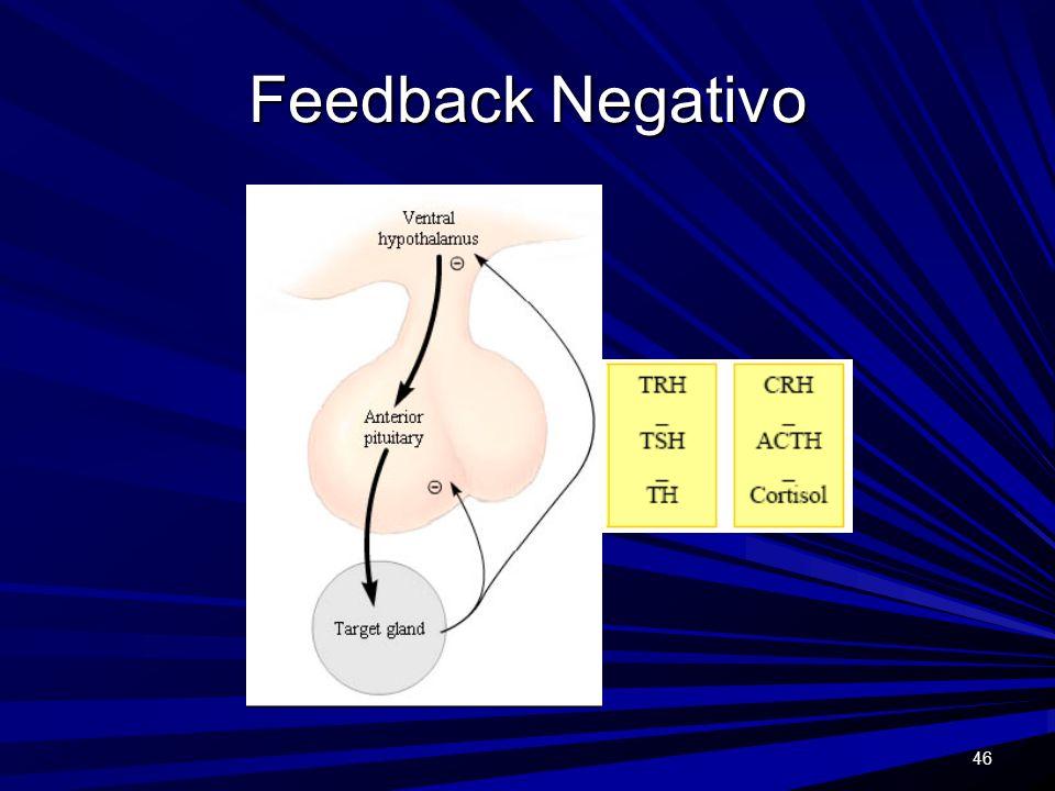 46 Feedback Negativo
