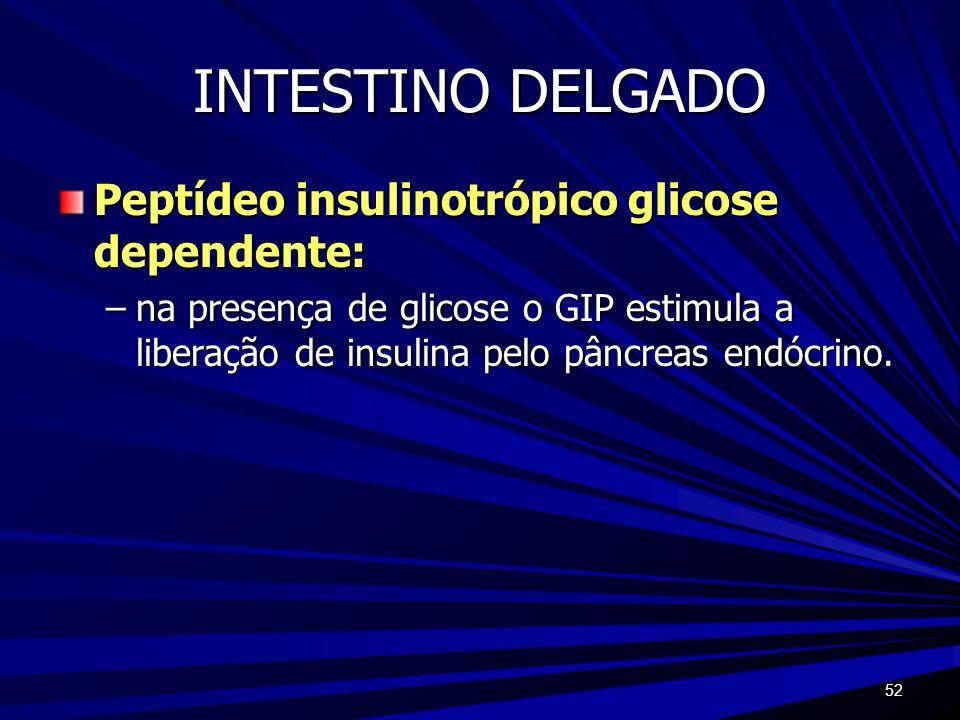 52 INTESTINO DELGADO Peptídeo insulinotrópico glicose dependente: –na presença de glicose o GIP estimula a liberação de insulina pelo pâncreas endócri