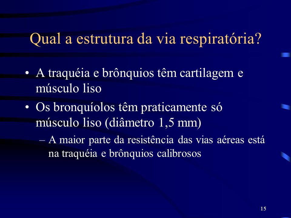 15 Qual a estrutura da via respiratória? A traquéia e brônquios têm cartilagem e músculo liso Os bronquíolos têm praticamente só músculo liso (diâmetr