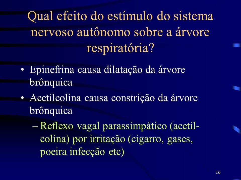 16 Qual efeito do estímulo do sistema nervoso autônomo sobre a árvore respiratória? Epinefrina causa dilatação da árvore brônquica Acetilcolina causa