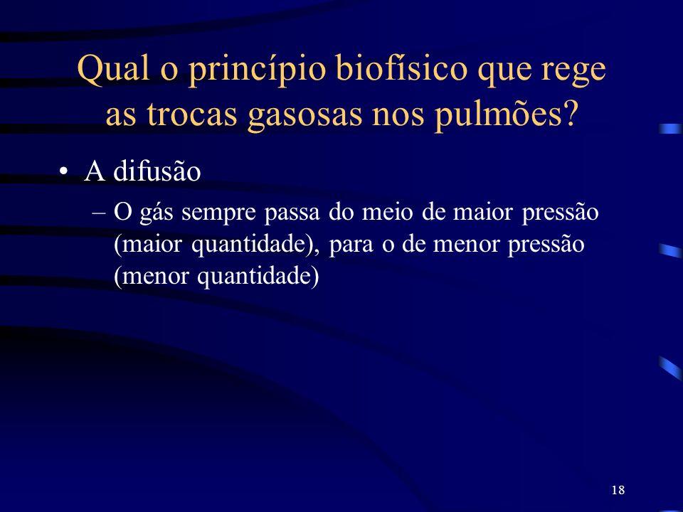 18 Qual o princípio biofísico que rege as trocas gasosas nos pulmões? A difusão –O gás sempre passa do meio de maior pressão (maior quantidade), para