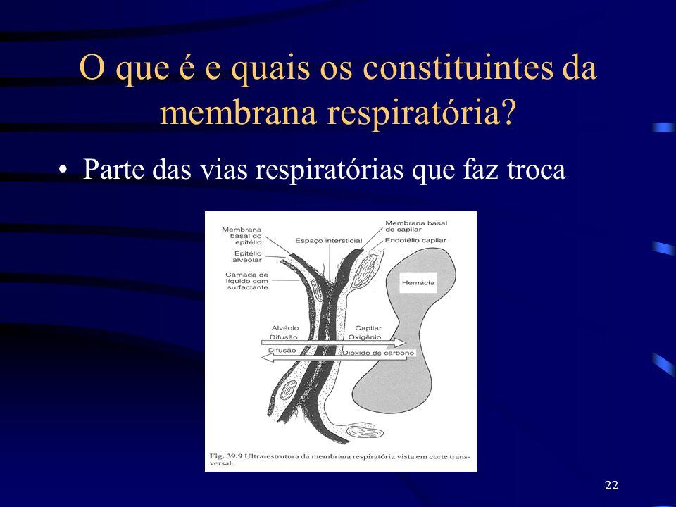 22 O que é e quais os constituintes da membrana respiratória? Parte das vias respiratórias que faz troca