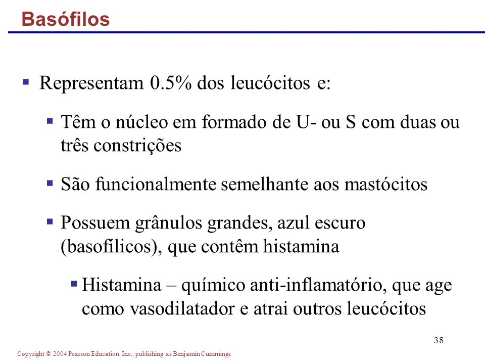 Copyright © 2004 Pearson Education, Inc., publishing as Benjamin Cummings 38 Representam 0.5% dos leucócitos e: Têm o núcleo em formado de U- ou S com