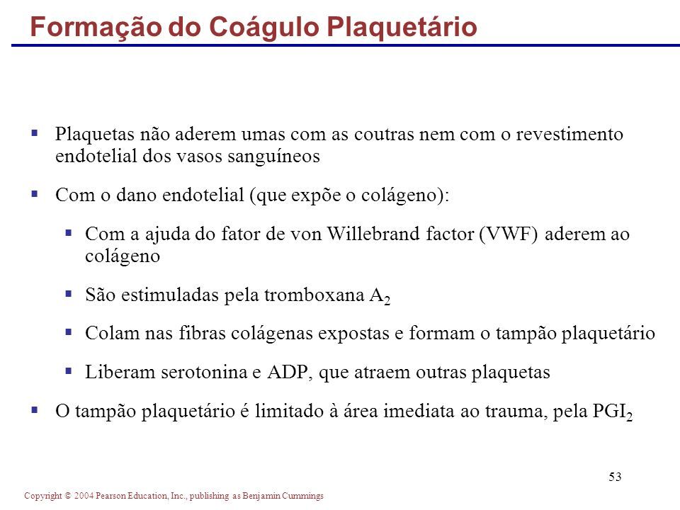 Copyright © 2004 Pearson Education, Inc., publishing as Benjamin Cummings 53 Plaquetas não aderem umas com as coutras nem com o revestimento endotelia