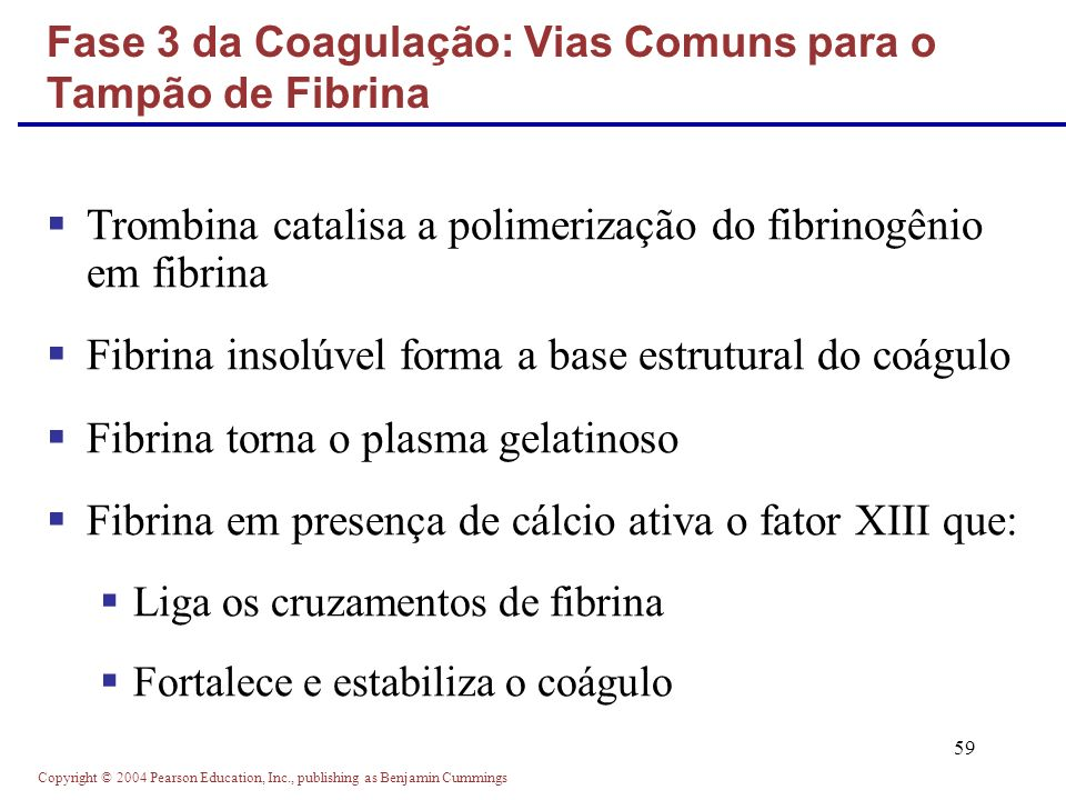 Copyright © 2004 Pearson Education, Inc., publishing as Benjamin Cummings 59 Trombina catalisa a polimerização do fibrinogênio em fibrina Fibrina inso